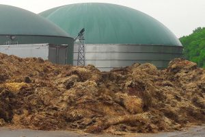Chicken manure in front of anaerobic digesters.